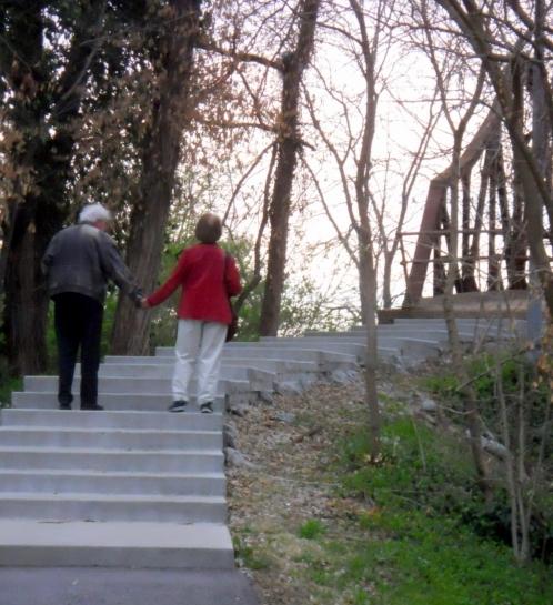 Nicki's Central West End Guide Forest Park  Forest Park
