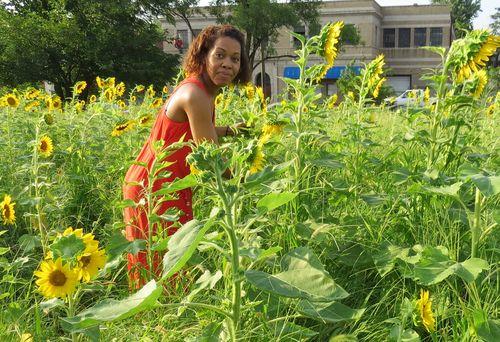 Nicki's Central West End Guide Events, Sightings  STL Village St. Louis Richard Reilly MO Missouri Botanical Garden Lyda Krewson Gail Farley Delmar + Sunflower Project Central West End